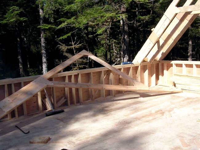 Shed Dormer Rafter Design http://www.countryplans.com/cowan.html