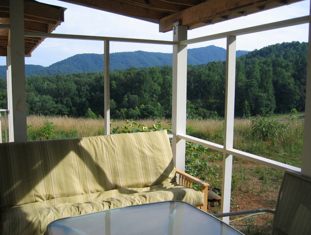 20 x 24 2-story cabin screen porch